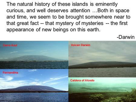 The natural history of these islands is eminently curious, and well deserves attention …Both in space and time, we seem to be brought somewhere near to.