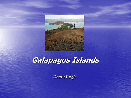 Galapagos Islands Galapagos Islands Devin Pugh. Galapagos Islands Where: Where: –Located over 1000 km from the South American Continent and 600 miles.