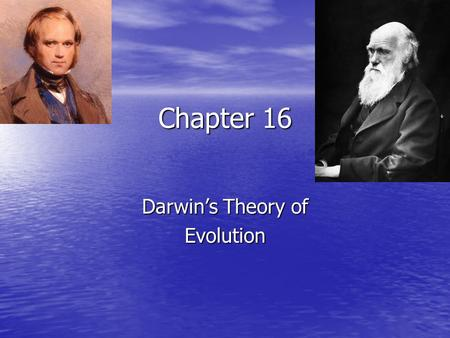 Chapter 16 Darwin's Theory of Evolution. What is evolution??