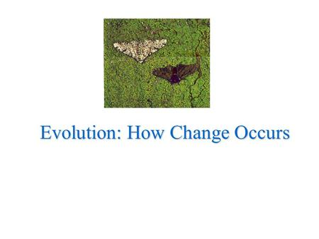 Evolution: How Change Occurs. Charles Darwin Proposed formal theory of evolution - change in species over time - modern organisms descend from ancient.