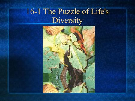 16-1 The Puzzle of Life's Diversity