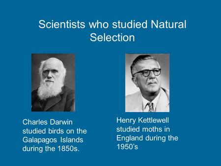 Scientists who studied Natural Selection