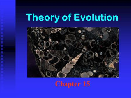 Theory of Evolution Chapter 15. Theory Science = Hypotheses that pass testing. Highest honor in science. Science = Hypotheses that pass testing. Highest.