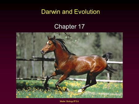 Darwin and Evolution Chapter 17 Mader: Biology 8th Ed.
