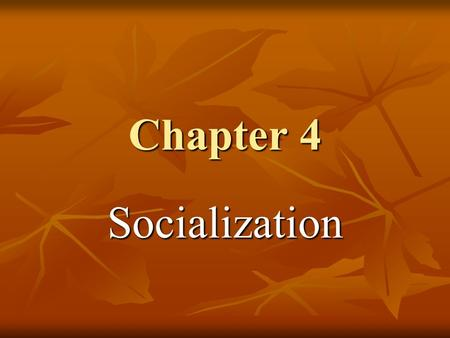 Chapter 4 Socialization. Socialization The process by which people learn their culture. The process by which people learn their culture. They do so by.