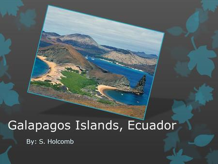 Galapagos Islands, Ecuador By: S. Holcomb. What is it?  Consists of 13 major islands, 5 of which are inhabited  The main reason for tourists and nature.