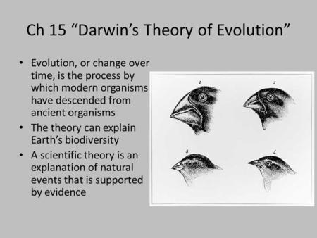 "Ch 15 ""Darwin's Theory of Evolution"""