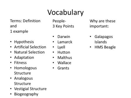 Vocabulary Terms: Definition and 1 example Hypothesis