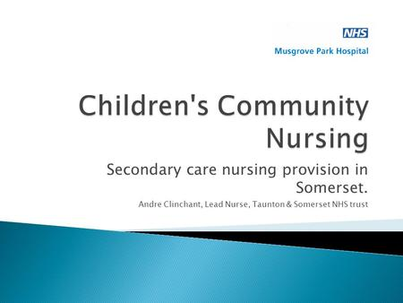 Secondary care nursing provision in Somerset. Andre Clinchant, Lead Nurse, Taunton & Somerset NHS trust.