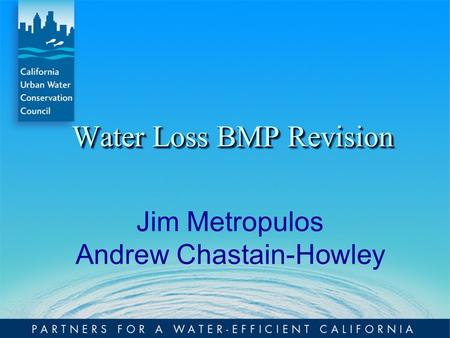 Water Loss BMP Revision Jim Metropulos Andrew Chastain-Howley.