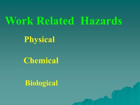 Work Related Hazards Physical Chemical Biological.