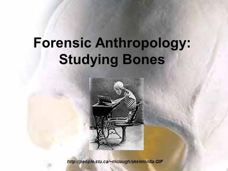 bone forensic anthropologists essay Lastly, after having recovered the remains forensic anthropologist noted that many of the remains impacted by burning showed significant discoloration, warping and bone shrinkage, which affected the recognition of perimortem trauma.