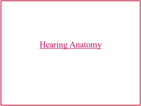 Hearing Anatomy.