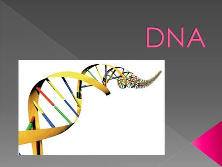  Deoxyribo- nucleic Acid is made up of nucleotides.
