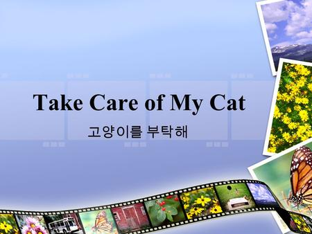 Take Care of My Cat 고양이를 부탁해. Details Released: 2001 Director: Jeong Jae-eun ( 정재은 ) This 'coming of age' movie follows the lives of a group of friends.