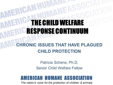 AMERICAN HUMANE ASSOCIATION The nation's voice for the protection of children & animals THE CHILD WELFARE RESPONSE CONTINUUM CHRONIC ISSUES THAT HAVE PLAGUED.