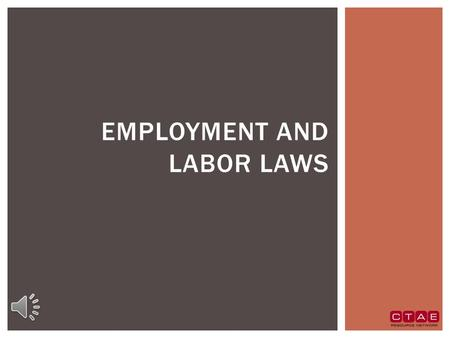 EMPLOYMENT AND LABOR LAWS  These laws:  Prevent discrimination and harassment in the workplace.  Outline workplace poster requirements.  Set wage.