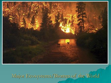 Major Ecosystems/Biomes of the World