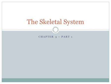 CHAPTER 5 – PART 1 The Skeletal System. Two Divisions of the Skeleton: 1. Axial Skeleton – The bones that form the longitudinal axis of the body. 2. Appendicular.