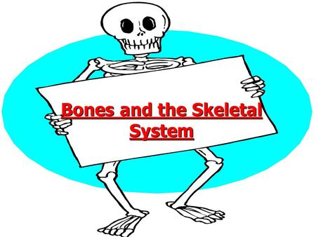 Bones and the Skeletal System. Jobs the skeleton does Look at the pictures and think what does the skeleton do for you??? Look at the pictures and think.