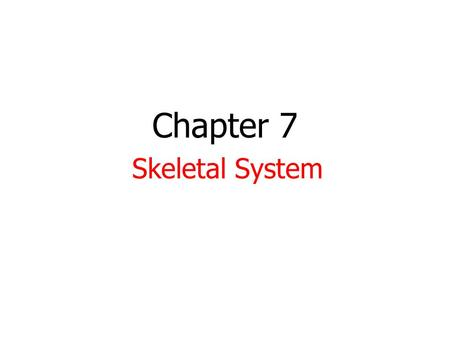 Chapter 7 Skeletal System. HW-None 1. Take out 7.1-7.3 notes. 2. Do not get your models yet!