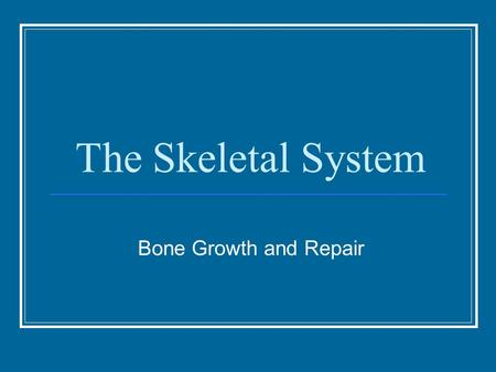 The Skeletal System Bone Growth and Repair. Skeleton Axial and Appendicular Skeletons Sex Differences: Generally, the male skeleton is larger and heavier.