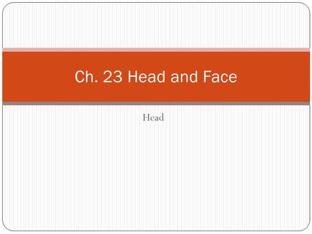 Ch. 23 Head and Face Head.