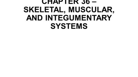 CHAPTER 36 – SKELETAL, MUSCULAR, AND INTEGUMENTARY SYSTEMS