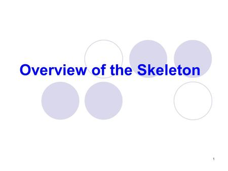 Overview of the Skeleton 1. Bones of the skeleton Cartilages, ligaments and other connective tissues that stabilize and connect The skeletal system includes.