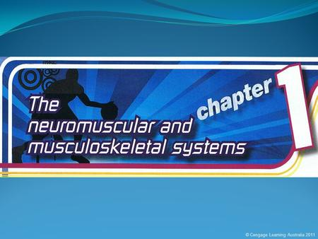 © Cengage Learning Australia 2011. KEY KNOWLEDGEKEY SKILLS  The way the neuromuscular and musculoskeletal systems work together to bring about movements.