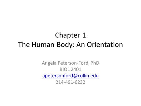 Chapter 1 The Human Body: An Orientation Angela Peterson-Ford, PhD BIOL 2401 214-491-6232.