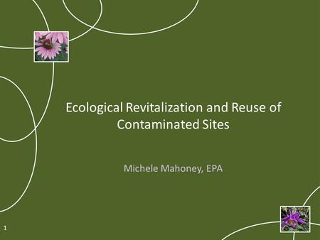 Ecological Revitalization and Reuse of Contaminated Sites Michele Mahoney, EPA 1.