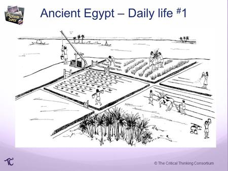 © The Critical Thinking Consortium Ancient Egypt – Daily life # 1.