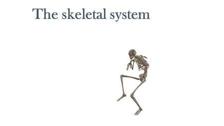 The skeletal system. What Are Bones? Bones may seem to be dry and brittle, but your bones are living organs. Bones are the major organs of the skeletal.