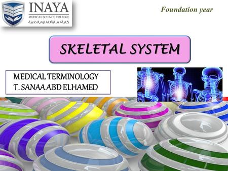 Foundation year SKELETAL SYSTEM MEDICAL TERMINOLOGY T. SANAA ABD ELHAMED.