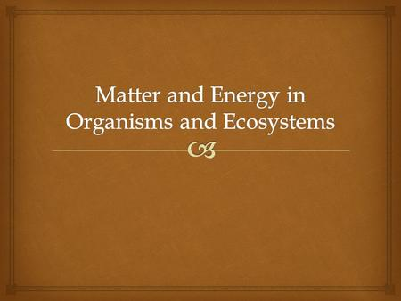  Energy Flow in Ecosystems Section One  Energy Roles  An organisms role is determined by how it obtains energy and how it interacts with other organisms.