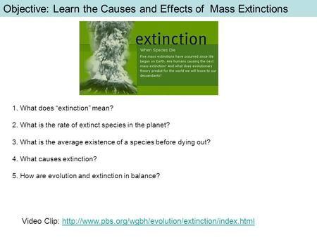 "Objective: Learn the Causes and Effects of Mass Extinctions 1. What does ""extinction"" mean? 2. What is the rate of extinct species in the planet? 3. What."