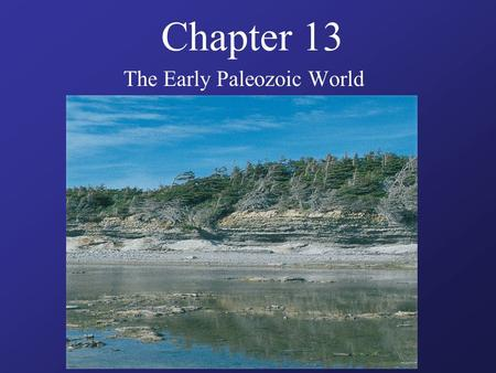Chapter 13 The Early Paleozoic World. Guiding Questions What kinds of animal skeletons arose during the Cambrian period? How did Ordovician life differ.