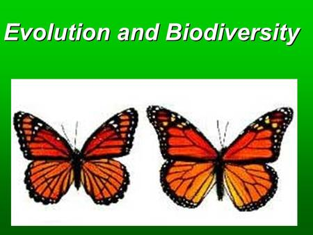 Evolution and Biodiversity. Concepts  Origins  Evolutionary Processes  Ecological Niches  Species Formation  Species Extinction.