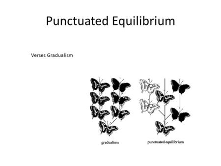 Punctuated Equilibrium Verses Gradualism. What Drives Evolution.