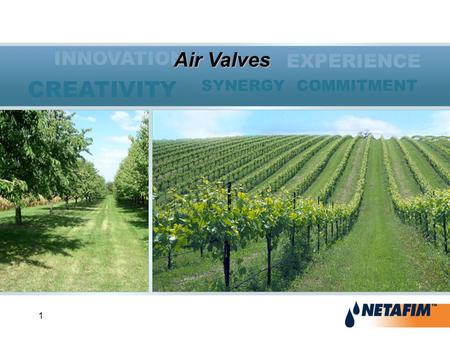 1 INNOVATION EXPERIENCE SYNERGY COMMITMENT CREATIVITY Air Valves.