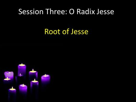 "Session Three: O Radix Jesse Root of Jesse. Let's be radical! Radix – Root – Radical ""favouring fundamental change at the root cause of a matter"""