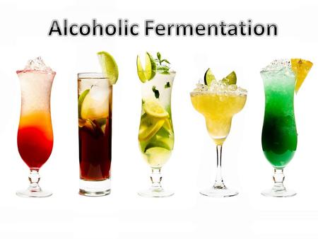 Fermentation: metabolic process in which an organism converts a carbohydrate alcohol or an acid Beer is made from four basic ingredients: Barley, water,