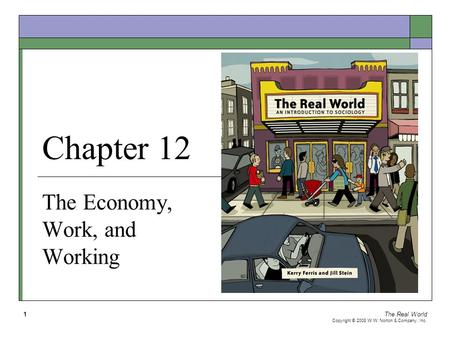 The Real World Copyright © 2008 W.W. Norton & Company, Inc. 1 Chapter 12 The Economy, Work, and Working.