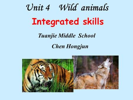 Unit 4 Wild animals Integrated skills Tuanjie Middle School Chen Hongjun.