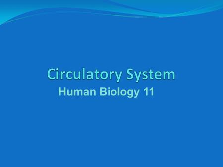 Human Biology 11. Functions of the Circulatory System brings oxygen and nutrients to cells takes wastes away from cells relays chemical messages throughout.