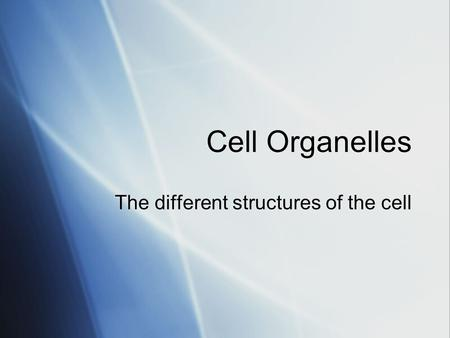 Cell Organelles The different structures of the cell.