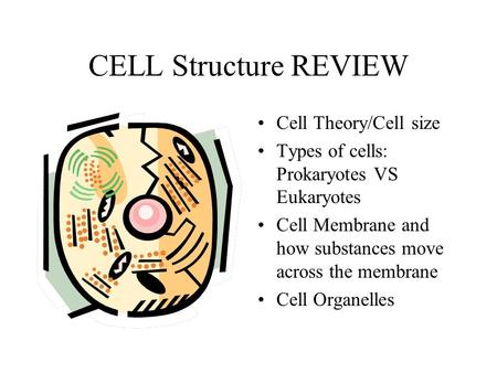 CELL Structure REVIEW Cell Theory/Cell size Types of cells: Prokaryotes VS Eukaryotes Cell Membrane and how substances move across the membrane Cell Organelles.