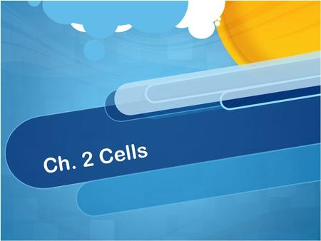Ch. 2 Cells.