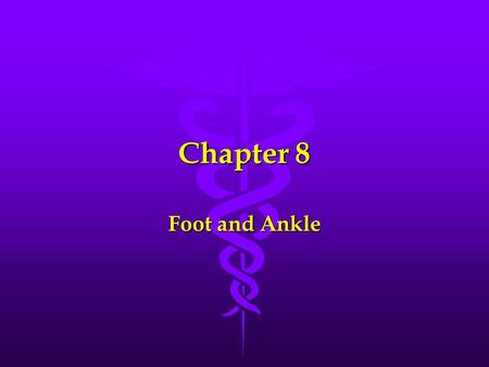 Chapter 8 Foot and Ankle. Bones of the Foot and Ankle 28 bones: 28 bones: Tarsals (7) Tarsals (7) Metatarsals (5) Metatarsals (5) Phalanges (14) Phalanges.